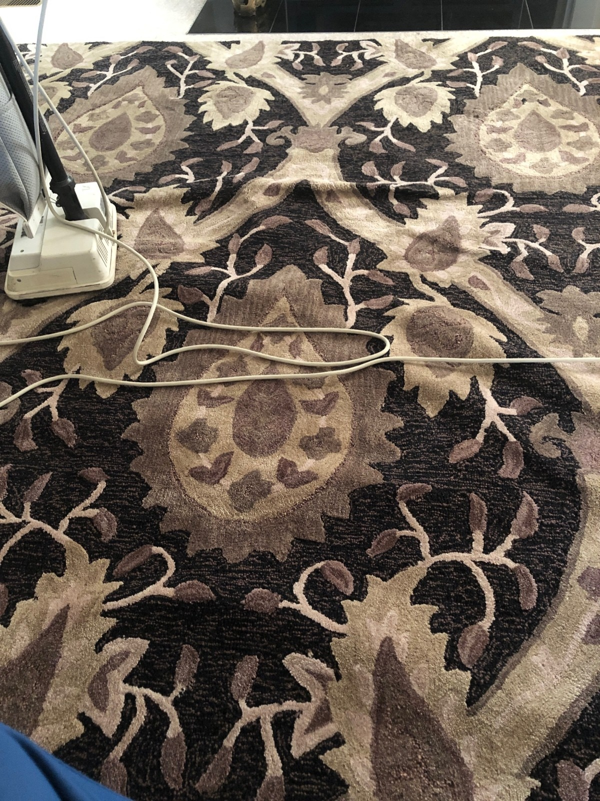 Fixing Area Rugs That Bubble Up Thriftyfun