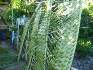 Coconut Leaf Panels - several panels