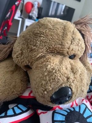 Identifying a Stuffed Toy Dog - light brown stuffed dog with large black plastic nose