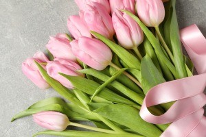 A bouquet of spring tulips.