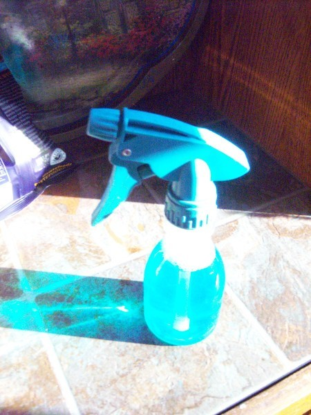 Spray bottle with cleaner