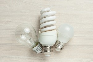 A collection of different types of light bulbs.