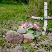 A pet's grave in a backyard.