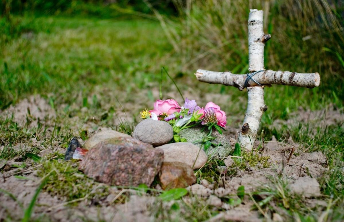 Burying a Dead Animal Near a Vegetable Garden? | ThriftyFun