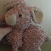 Identifying and Finding a Stuffed Toy Rabbit - curly furred dark pink bunny