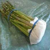 Asparagus stored with a wet paper towel and a rubber band.
