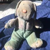 Identifying a Stuffed Toy - stuffed dog toy