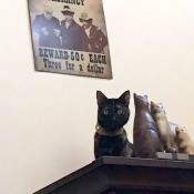 Will the Real Ellie Please Purr! - torti cat next to figurine of cats