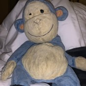 Identifying a Stuffed Toy - old blue and white monkey, missing one eye
