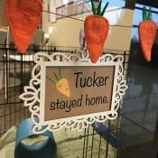 Felt Carrot Garland and Paper Carrot Sign - view of the garland and the sign