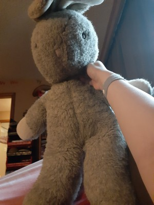 Identifying a Plush Bunny - bunny from the front