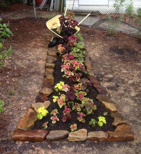 Spilling Wheelbarrow Garden Planter - rock lined narrow planter with a tipped yellow wheelbarrow cascading soil and coleus into the coleus planted bed