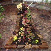 Spilling Wheelbarrow Garden Planter - rock lined narrow planter with a tipped yellow wheelbarrow cascading soil and coleus into the coleus planted bed