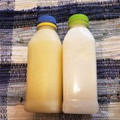 Yes Virginia, You Can Freeze Milk - bottles of frozen and thawed milk