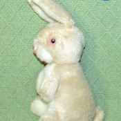 Identifying a Stuffed Rabbit