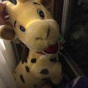 Identifying a Stuffed Giraffe - cute stuffed giraffe