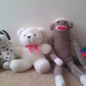 Identifying Stuffed Toys - stuffed toys leaning on a wall