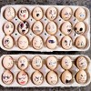 Faux Egg Faces - two cartons of egg faces