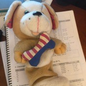 Identifying a Stuffed Toy - tan and white stuffed dog with a red, white, and blue bone on its chest