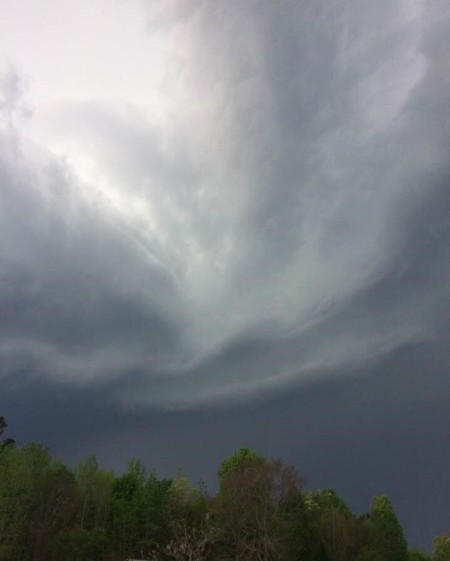 Storm Clouds - very dark clouds over the tree tops