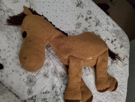 Identifying a Stuffed Horse