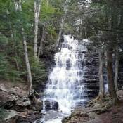 Buttermilk Falls - woodland waterfall