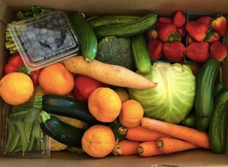 A box of fresh produce; carrots, zucchini, strawberries, cabbage, etc.