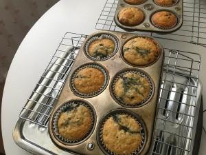 baked Pancake Mix Muffins in tins