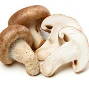 A collection of sliced and whole mushrooms.
