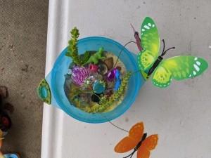 A small sand terrarium with butterflies around.