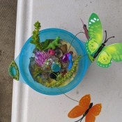 Making a Sand Terrarium or Fairy Garden for Kids