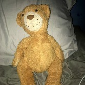 Identifying a Stuffed Animal - stuffy lying on a pillow