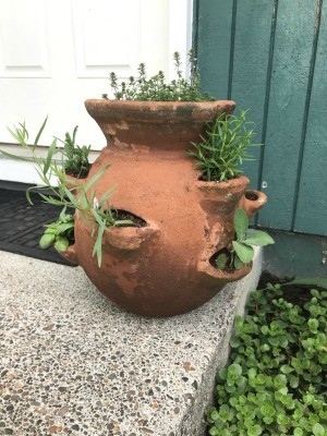 A strawberry pot filled with herbs on a front doorstep.