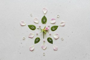 A mandala made from petals and leaves.