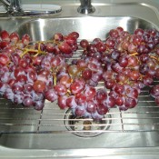 A cooling rack being used to drip dry grapes.