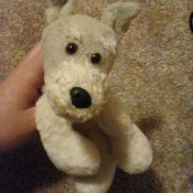 Identifying Stuffed Animals - stuffed puppy