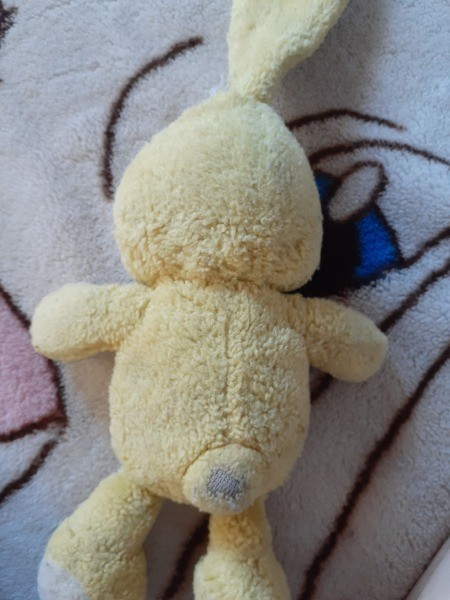 Identifying a Stuffed Toy Bunny