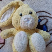 Identifying a Stuffed Toy Bunny - stuffed yellow bunny, missing its left ear and nose