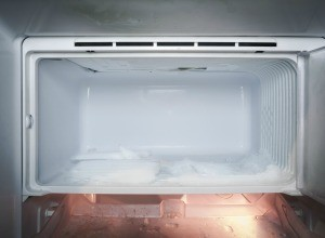 A clean, empty freezer.