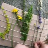 Nature Weaving - yellow flowers added and other plants adjusted