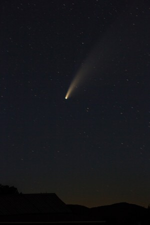 The NEOWISE comet in a dark sky.