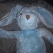 Identifying a Stuffed Toy?