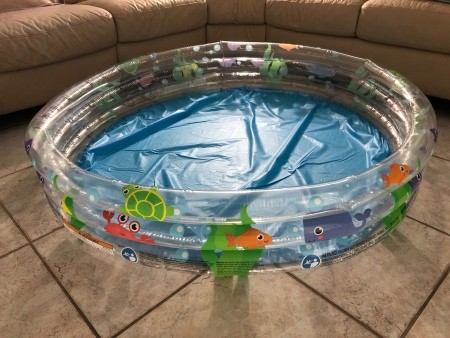 A blow up pool in a living room.