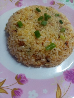 A plate of java rice, garnished with spring onions.