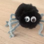 Pom Pom Spider - glue on eyes