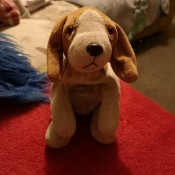 A small stuffed dog toy.