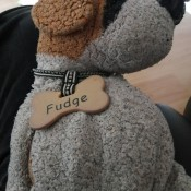 "A old and worn stuffed dog named ""Fudge""."
