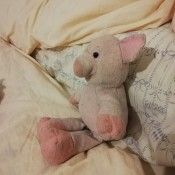A small pink plush pig.