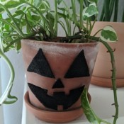 Halloween Pumpkin Planter - planter decorated and plant placed inside