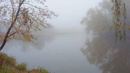 A foggy reflection on a lake.